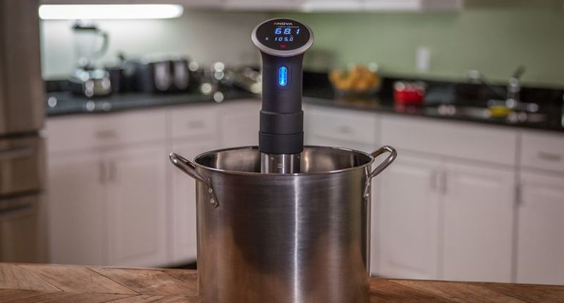 TD Anova Precision Cooker Techie Dad